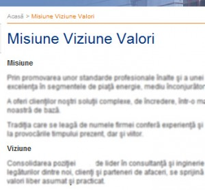 misiune si viziune in copywriting